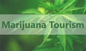 marijuana tourism